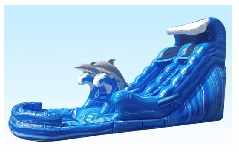 Dolphin Inflatable Water Slide Rental